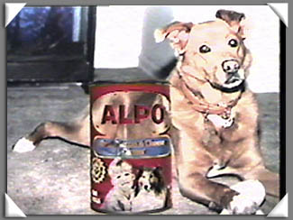 ALPO Dog Food Commercial